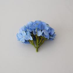 Hlava hortenzia modrofialová