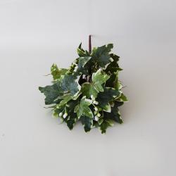 Zeleň listy halúzka brečtan