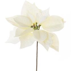 Vianočná ruža biela 23cm