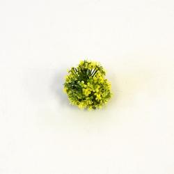 Hlava cesnak zelený