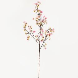 Konár slivka ruž-biela 100cm