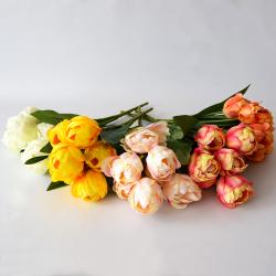 Kytica tulipán 5FA